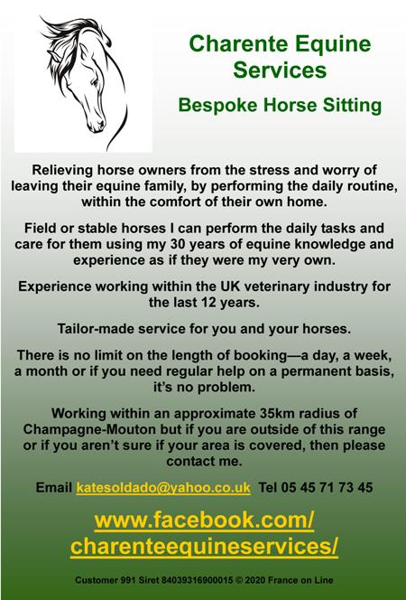Charente Equine Services,bespoke horse sitting,horse care,English,field horses,stabled horses,veterinary care,Champagne Mouton,Charente,department 16
